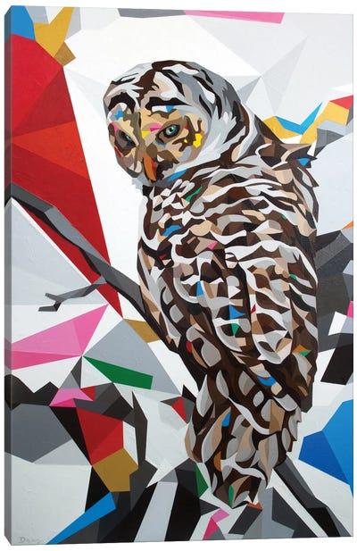 Owl22 Canvas Art Print