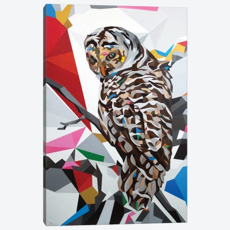Owl22 Canvas Print #DAS17} by DAAS Canvas Print