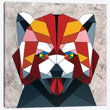 Red Panda Canvas Print #DAS20} by DAAS Canvas Print