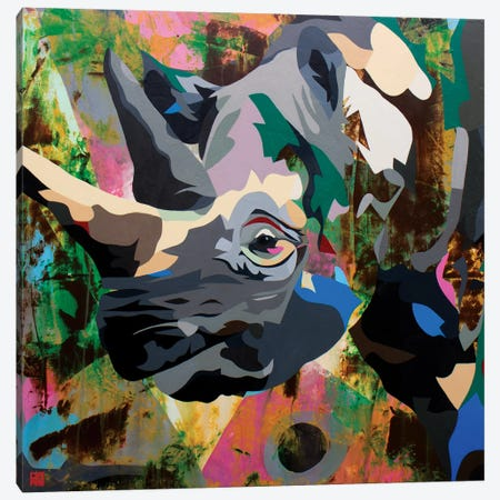 Rhino Canvas Print #DAS21} by DAAS Art Print