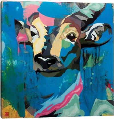 Antelope Canvas Art Print