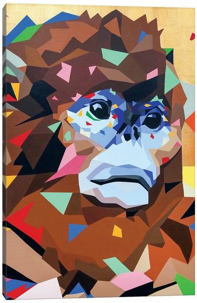 Golden Monkey Canvas Art Print