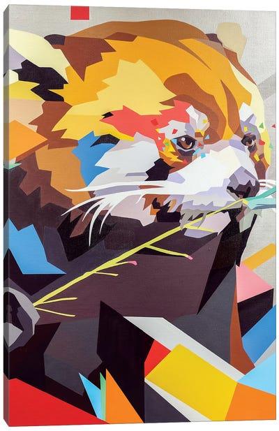 Red Panda II Canvas Art Print