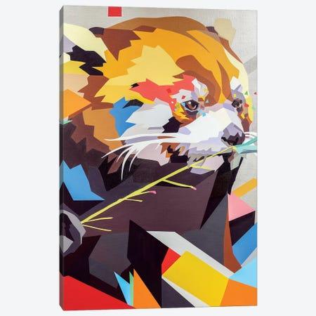 Red Panda II Canvas Print #DAS39} by DAAS Canvas Wall Art
