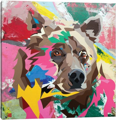 Grizzly Canvas Print #DAS7