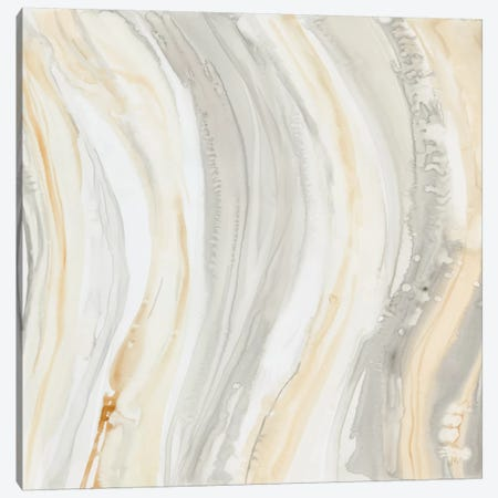 Alabaster I Canvas Print #DBA1} by Debbie Banks Art Print