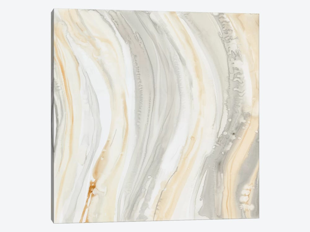 Alabaster I by Debbie Banks 1-piece Canvas Artwork