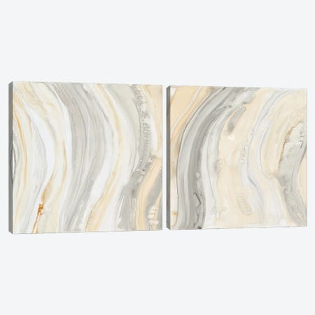 Alabaster Diptych Canvas Print Set #DBA2HSET001} by Debbie Banks Canvas Print