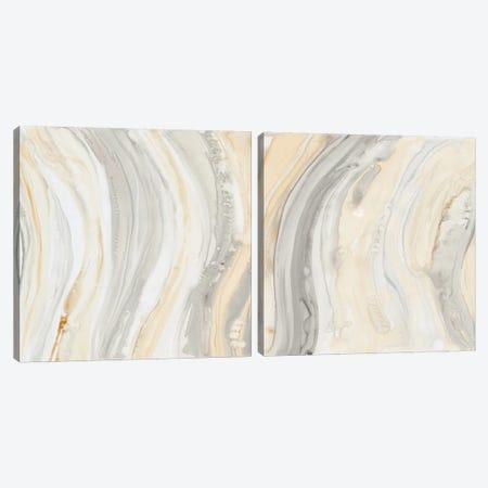 Alabaster Diptych Canvas Print Set #DBA2HSET001} by Debbie Banks Canvas Print