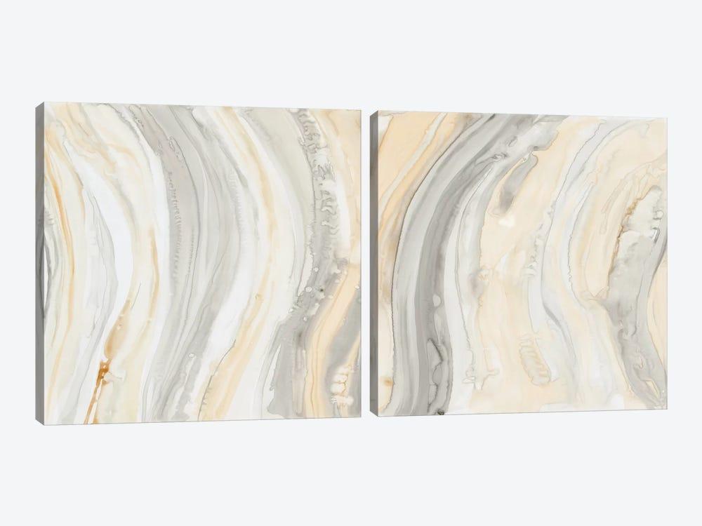Alabaster Diptych by Debbie Banks 2-piece Canvas Art