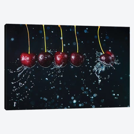 Newton'S Cradle Canvas Print #DBE5} by Dina Belenko Canvas Wall Art