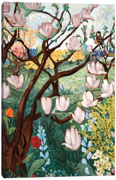 Magnolia Blossoms Canvas Art Print
