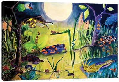 Awake While You Sleep Canvas Art Print
