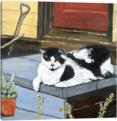 Neighbor's Cat Canvas Art Print