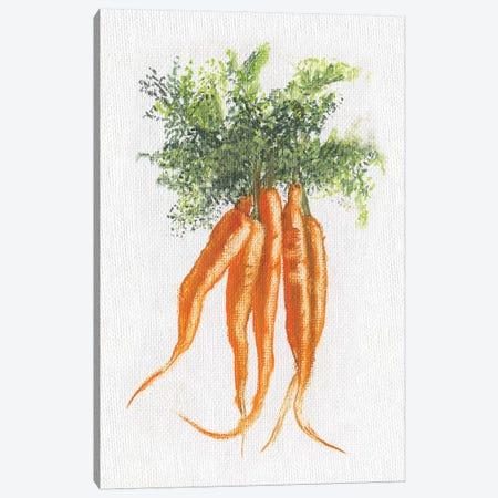 Garden Fresh Carrots Canvas Print #DBK14} by Donna Brooks Canvas Art Print