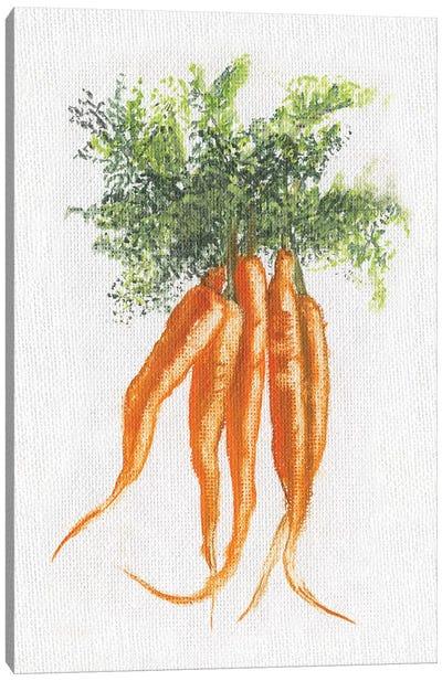 Garden Fresh Carrots Canvas Art Print
