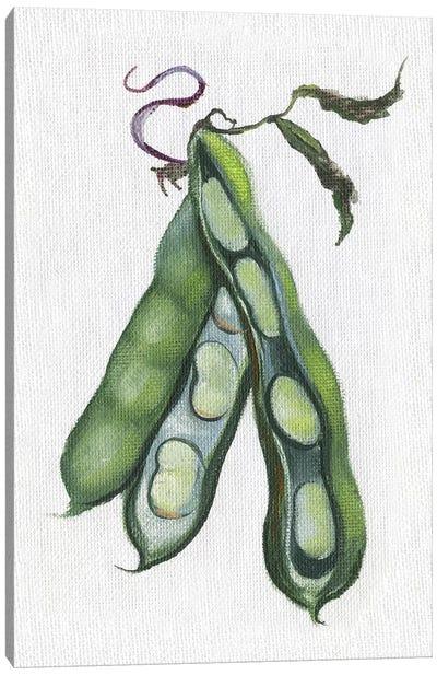 Garden Fresh Peas Canvas Art Print