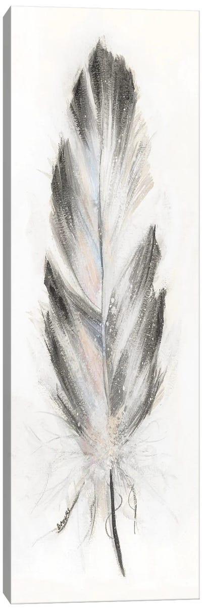 Feather Fancy I Canvas Art Print