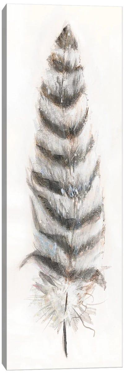 Feather Fancy II Canvas Art Print