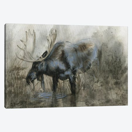 Majestic Elk Canvas Print #DBK1} by Donna Brooks Canvas Art Print
