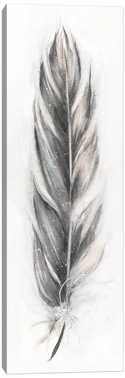 Feather Fancy III Canvas Art Print