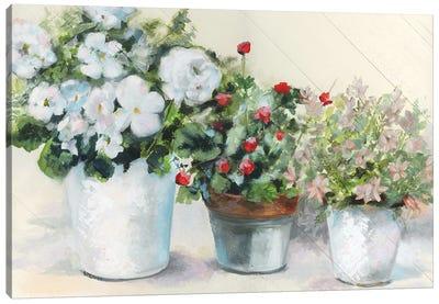 Cottage Display Canvas Art Print