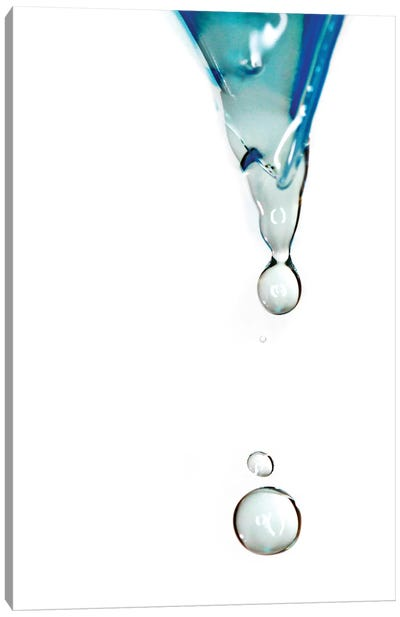 Water Canvas Art Print