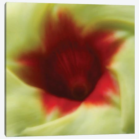 Flower Edible Canvas Print #DBM32} by Dana Brett Munach Canvas Artwork