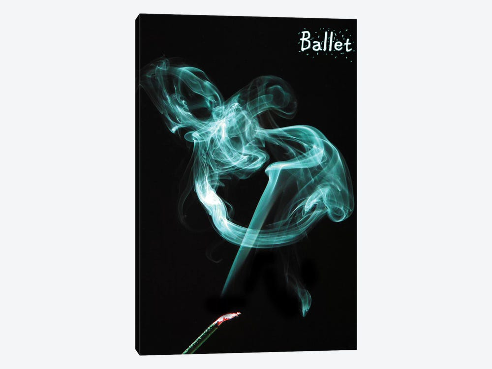 Ballet by Dana Brett Munach 1-piece Canvas Wall Art