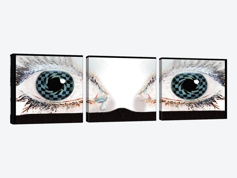 In Her Eyes by Dana Brett Munach 3-piece Canvas Art