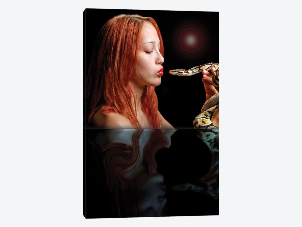 Serpents Of Eden by Dana Brett Munach 1-piece Canvas Art
