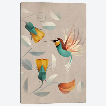Hummingbird Canvas Print #DBR10} by Dieter Braun Art Print