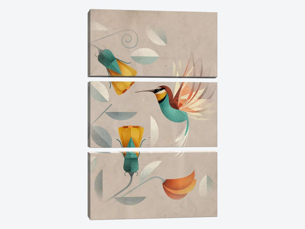 Hummingbird by Dieter Braun 3-piece Canvas Art