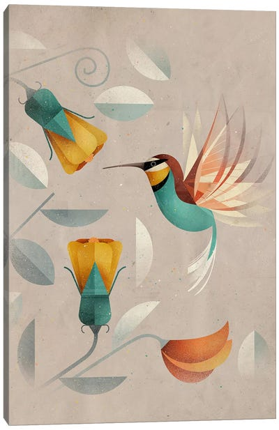 Hummingbird Canvas Art Print