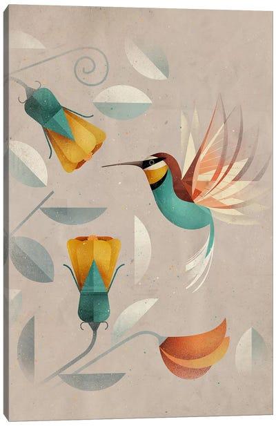 Hummingbird Canvas Art Print