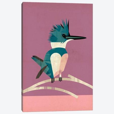 Kingfisher Canvas Print #DBR11} by Dieter Braun Art Print