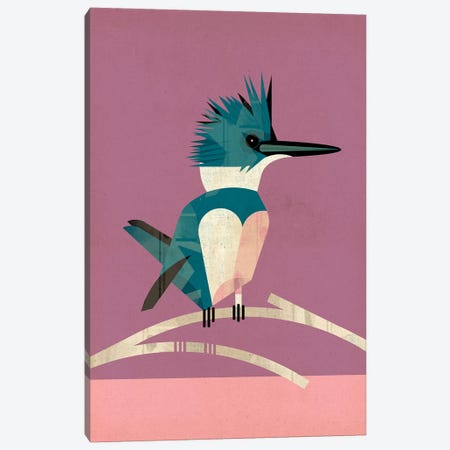 Kingfisher Canvas Print #DBR11} by Dieter Braun Art Print