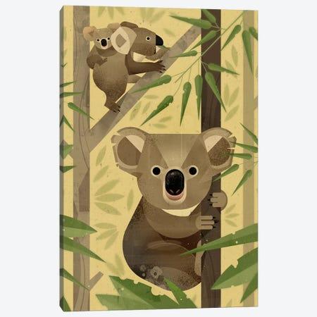 Koala Canvas Print #DBR12} by Dieter Braun Canvas Art Print