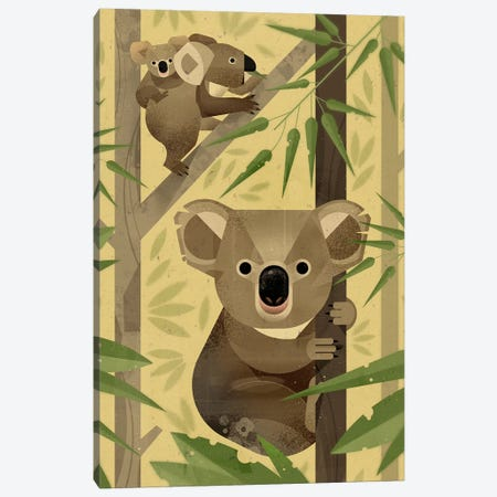 Koala Canvas Print #DBR12} by Dieter Braun Canvas Art Print