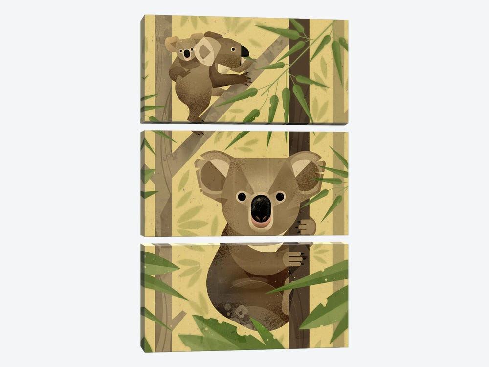Koala by Dieter Braun 3-piece Canvas Art