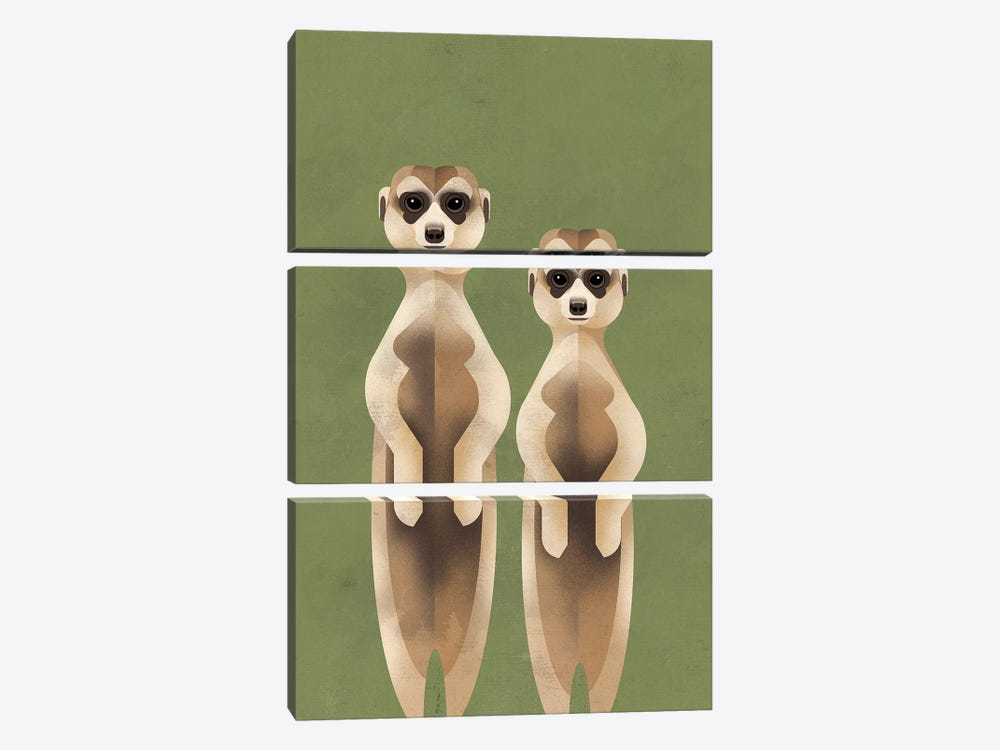 Meerkats by Dieter Braun 3-piece Canvas Artwork