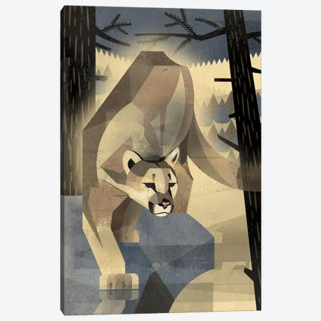 Mountain Lion Canvas Print #DBR15} by Dieter Braun Canvas Wall Art