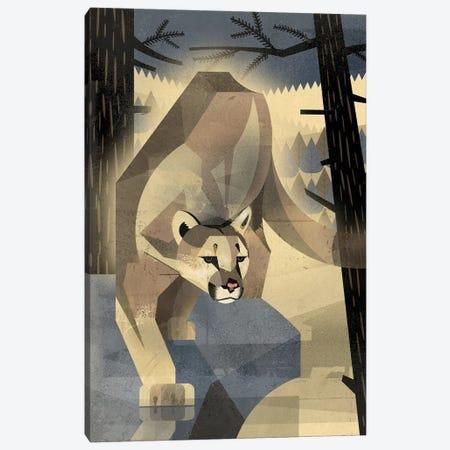 Mountain Lion Canvas Print #DBR15} by Dieter Braun Canvas Wall Art
