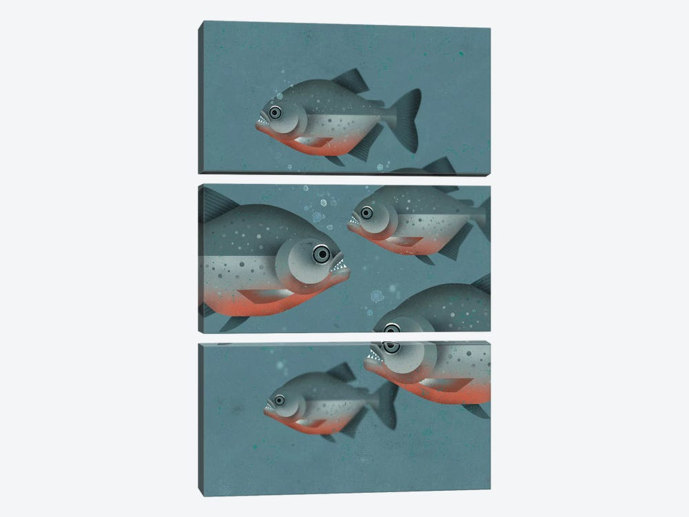 Piranhas 3-piece Canvas Artwork