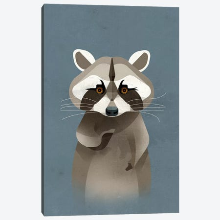 Racoon Canvas Print #DBR17} by Dieter Braun Canvas Artwork