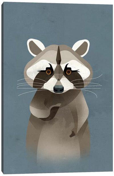 Racoon Canvas Art Print