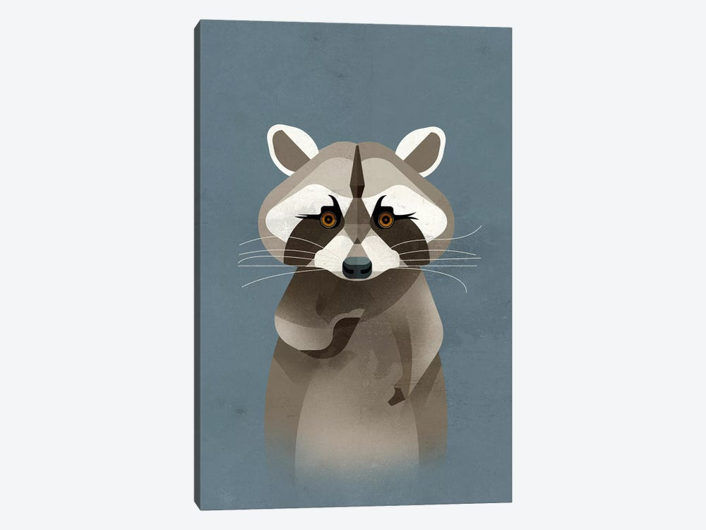Racoon by Dieter Braun 1-piece Art Print