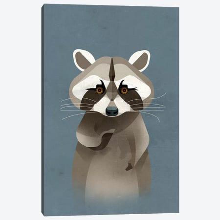 Racoon Canvas Print #DBR17} by Dieter Braun Canvas Artwork