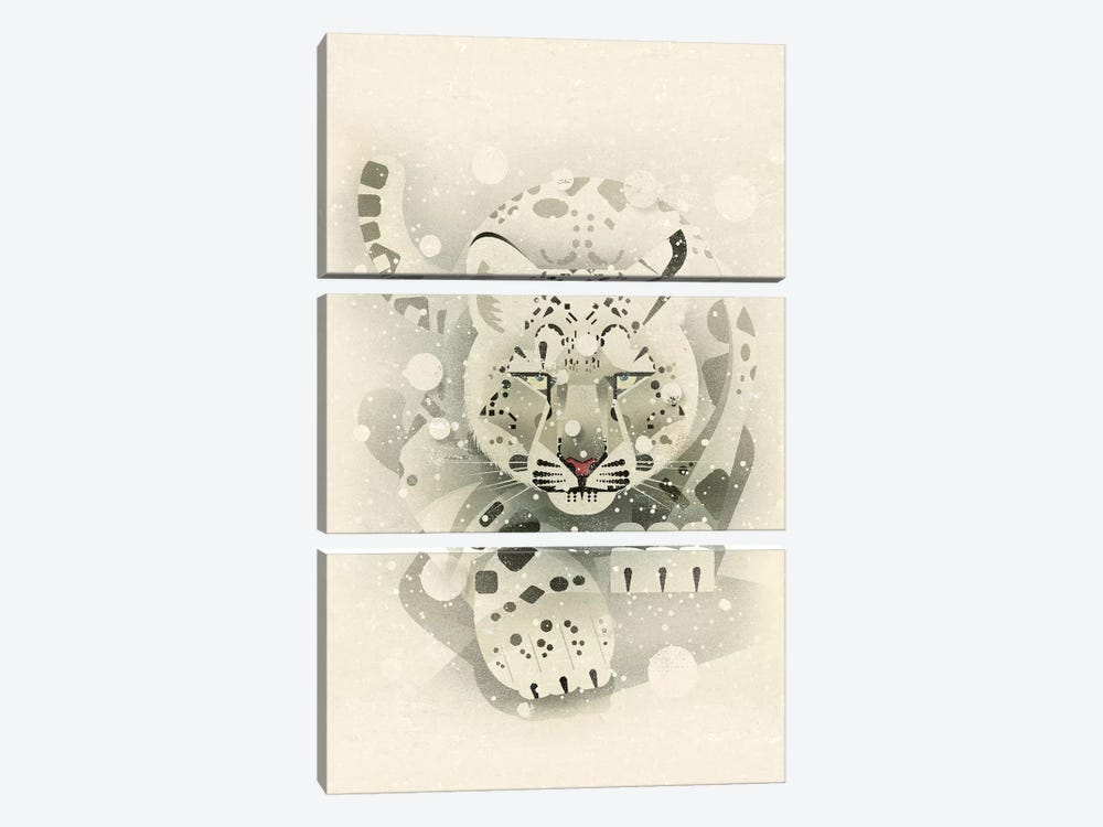 Snow Leopard by Dieter Braun 3-piece Art Print