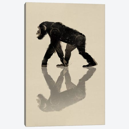 Chimp Canvas Print #DBR1} by Dieter Braun Canvas Print